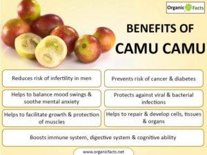 Benefits of Camu Camu
