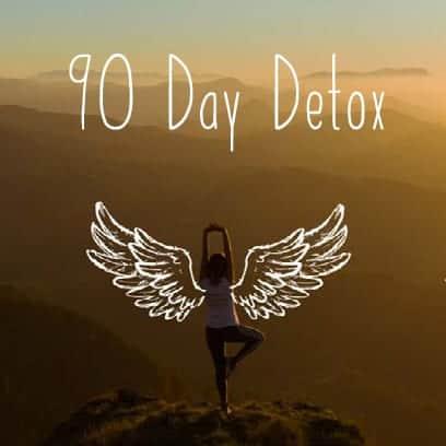 90 Day Detox Programme